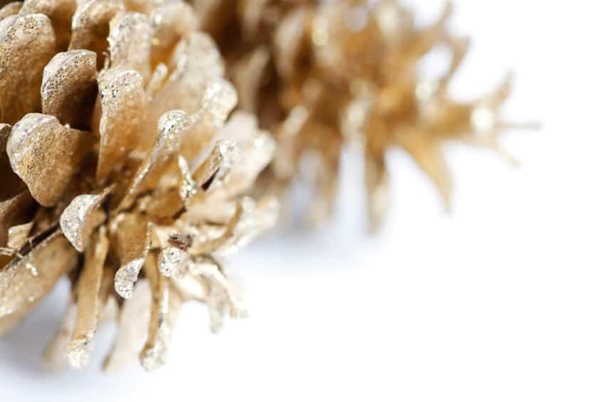 Goldene Zapfen für den Weihnachtsbaum
